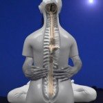 Backbone-Square